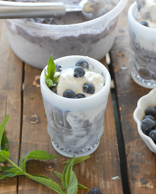Blueberry-Coconut-Ice-Cream-with-Dark-Chocolate-bits-BoulderLocavore-640